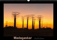 9783665567057 - Kribus, Uwe: Madagaskar - Insel der Lemuren (Wandkalender 2017 DIN A3 quer) - Buch