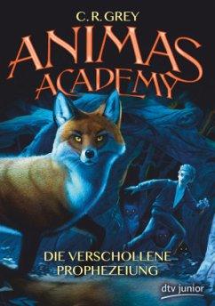 Die verschollene Prophezeiung / Animas Academy Bd.1 - Grey, C. R.