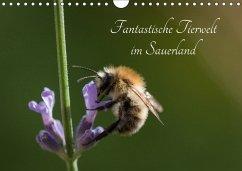 9783665567651 - Rein, Simone: Fantastische Tierwelt im Sauerland (Wandkalender 2017 DIN A4 quer) - Buch