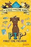 Pip findet eine Freundin / Die Schule für kleine Hunde Bd.2