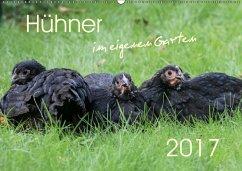 9783665567101 - Stephan, Nicole: Hühner im eigenen Garten (Wandkalender 2017 DIN A2 quer) - کتاب
