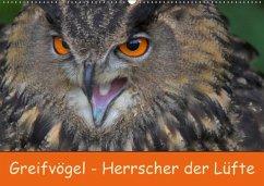 9783665568085 - Wejat-Zaretzke, Gabriela: Greifvögel - Herrscher der Lüfte (Wandkalender 2017 DIN A2 quer) - کتاب