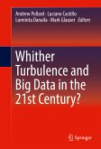 Whither Turbulence and Big Data in the 21st Century? (eBook, PDF)