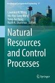 Natural Resources and Control Processes (eBook, PDF)