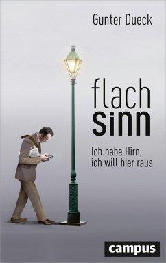 Flachsinn (eBook, PDF)