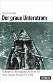 Der graue Unterstrom (eBook, PDF)