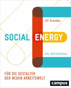 Social Energy (eBook, ePUB) - Brandes, Ulf