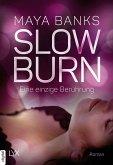 Eine einzige Berührung / Slow Burn Bd.5 (eBook, ePUB)