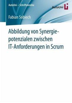 Abbildung von Synergiepotenzialen zwischen IT-A...