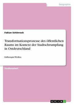 Transformationsprozesse des öffentlichen Raums im Kontext der Stadtschrumpfung in Ostdeutschland