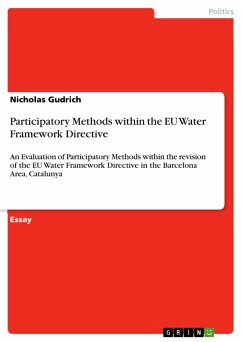 Participatory Methods within the EU Water Framework Directive (eBook, PDF)