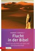 Flucht in der Bibel (eBook, PDF)