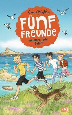 Fünf Freunde meistern jede Gefahr / Fünf Freunde Bd.22 - Blyton, Enid