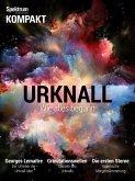 Spektrum - Kompakt - Urknall (eBook, PDF)