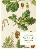 Thorbeckes Waldkalender 2018
