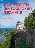 Zwei Seelen - Ein tödlicher Gedanke (eBook, ePUB)