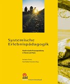 Systemische Erlebnispädagogik (eBook, ePUB)