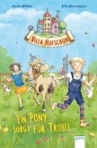Ein Pony sorgt für Trubel / Villa Hufschuh Bd.1