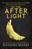 A Darkest Minds 3: In the Afterlight