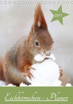 9783665580841 - Cerny, Birgit: Eichhörnchen - Planer (Tischkalender 2017 DIN A5 hoch) - Buch