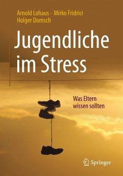 Jugendliche im Stress - Lohaus, Arnold; Fridrici, Mirko; Domsch, Holger