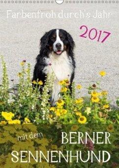 9783665582173 - Brenner, Sonja: Farbenfroh durch´s Jahr mit dem Berner Sennenhund (Wandkalender 2017 DIN A3 hoch) - Livre