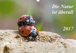 9783665582067 - Schröder, Kurt: Die Natur ist überall (Wandkalender 2017 DIN A3 quer) - Livre