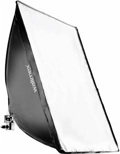 walimex Daylight 250 mit Softbox 40x60 cm