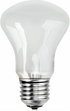 Elinchrom Einstellampe 196V/100W E 27
