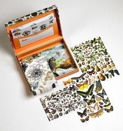 Letter Writing Box Natural History