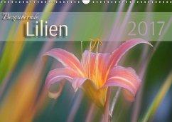 9783665583019 - Forrester, Susanne: Bezaubernde Lilien (Wandkalender 2017 DIN A3 quer) - Buch