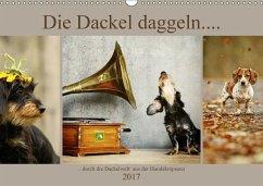 9783665582838 - Köntopp, Kathrin: Die Dackel daggeln.... (Wandkalender 2017 DIN A3 quer) - Kniha