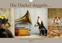 9783665582821 - Köntopp, Kathrin: Die Dackel daggeln.... (Wandkalender 2017 DIN A4 quer) - Bok