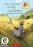 Hase und Holunderbär - Das Geheimnis der alten Goldmine (eBook, ePUB)