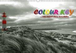 9783665583637 - N, N: Colour Key ...oder einfach etwas hervorgehoben (Wandkalender 2017 DIN A3 quer) - Buch