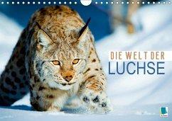 9783665583828 - CALVENDO: Die Welt der Luchse (Wandkalender 2017 DIN A4 quer) - Buch