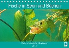 9783665583811 - CALVENDO: Fische in Seen und Bächen (Tischkalender 2017 DIN A5 quer) - Buch