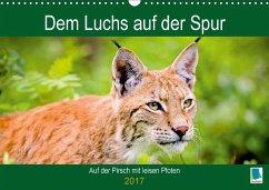 9783665583750 - CALVENDO: Dem Luchs auf der Spur (Wandkalender 2017 DIN A3 quer) - Buch
