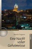 Eine Nacht voller Geheimisse (eBook, ePUB)