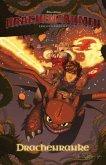 Drachenzähmen leicht gemacht - Kids-Comic 02