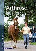Arthrose bei Pferden (eBook, ePUB)