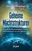 Geheime Machtstrukturen (eBook, ePUB)