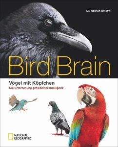 Bird Brain - Emery, Nathan