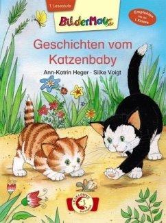 Bildermaus - Geschichten vom Katzenbaby - Heger, Ann-Katrin