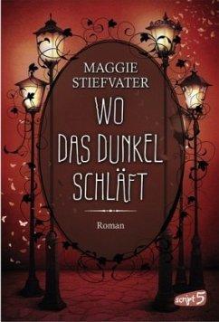 Wo das Dunkel schläft / Raven Cycle Bd.4 - Stiefvater, Maggie
