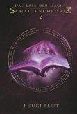 Schattenchronik 2: Feuerblut / Das Erbe der Macht Bd.4-6