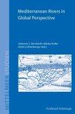 Mediterranean Rivers in Global Perspective