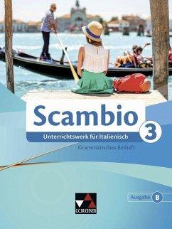 Scambio B 3 Grammatisches Beiheft - Stenzenberger, Martin