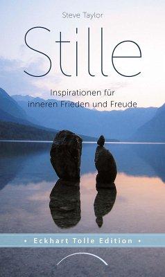 Stille (eBook, ePUB) - Taylor, Steve