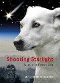 Shooting Starlight (eBook, ePUB)